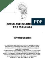 CURSO AURICULOPUNTURA