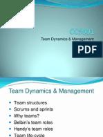 CC5001-teams-1-2012