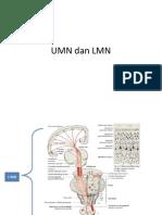 LMN & UMN