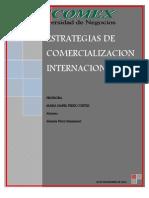 Carpeta de Evidencia de Extrategias de Mercado - Copy