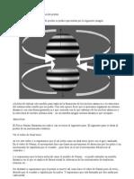 modelo dinámcio de protón