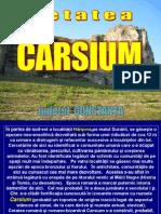 Www.nicepps.ro_8808_Cetatea Carsium - Harsova. Jud. CT