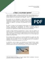Lógica_Liceo2012(PethusR)