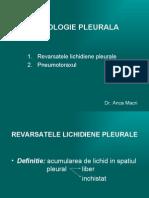 16 Patologie Pleurala
