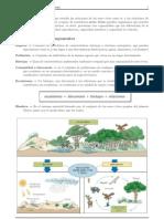 actividades ecosistemas