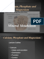 Calcium, Phosphate and Magnesium