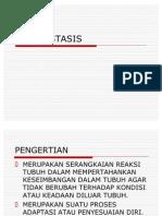 Otot Kerangka.pdf