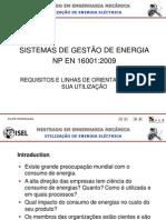 UEE 1011 1ºS  NP EN 16001 - 2009