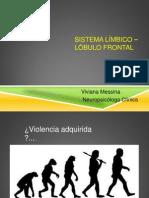 Corteza Prefrontal (Presentacion Dpc)