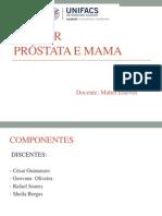 Patologia_cancer de Mama 26.11.12