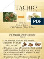 Pistachio Presentation