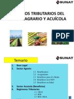 SECTOR AGRARIO Y ACUÍCOLA