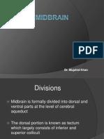 08 Midbrain
