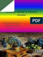 Ambalaje Utilizate in Industria Vinurilor