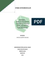 Sistema Osteomuscula1 Todooo