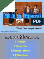 CDG - Teoría del Acto Parlamentario (Estructura y Clasificación)