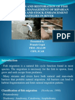 Fish Passes,Riparian Vegetation and Stock Enhancement in River