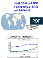 Copy of Marine Trends