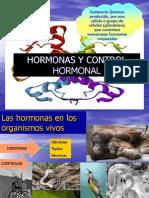 HORMONAS Y CONTROL II° MEDIOS