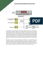 Sistema de Visualizacion de Informacion Vital Vids