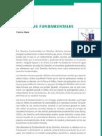 08.Derechos Fundamentales
