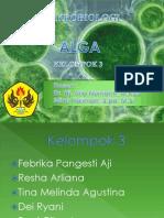 mikrobiologi_alga