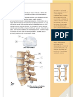 Lumbar y abdomen.