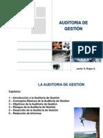 Auditoria de Gestion Capitulo 1