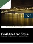 FlexibiIidad con Scrum