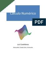 Calculo Numerico-Luis Castellanos