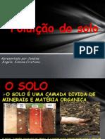 Poluição do solo - Tipos de poluiçã do solo - apresentação slides para trabalho