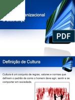 Cultura Organizacional e Liderança OK