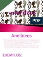 Anelídeos- Biologia
