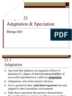 adaptations and speciation