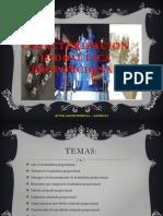 48950199-CARACTERIZACION-HIDRAULICA-PROPORCIONAL