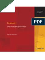 Résumé - Opinion summary Polygamy
