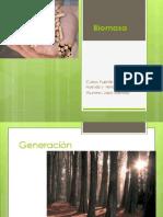 Energia de La BiomasaExpo.docx