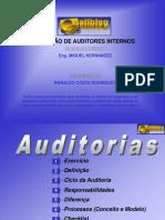 Auditor Interno