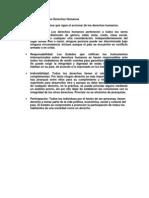 Principios que rigen los Derechos Humanos.docx