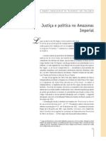 Justiça e política no Amazonas