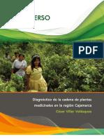 Diagnóstico-de-la-cadena-de-plantas-medicinales-en-Cajamarca