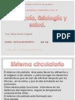1anatomia. diapositivas