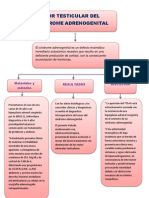 las_triunfadoras_grupal_histologia_ mapa_conceptual_keiko_suárez