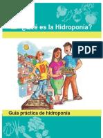 manual didáctico de hidroponia