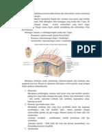 Skenario 1 Neuro