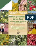 Plantas de Ica Ed2 Book Vlr