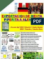 Exportacion de Menta Piperita a Alemania