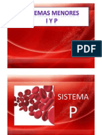Sistemas Menores I y P
