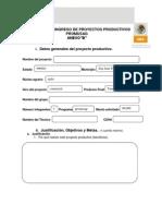 Formato Para Ingreso de Proyectos Productivos 2