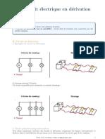 Le Circuit Electrique en Derivation